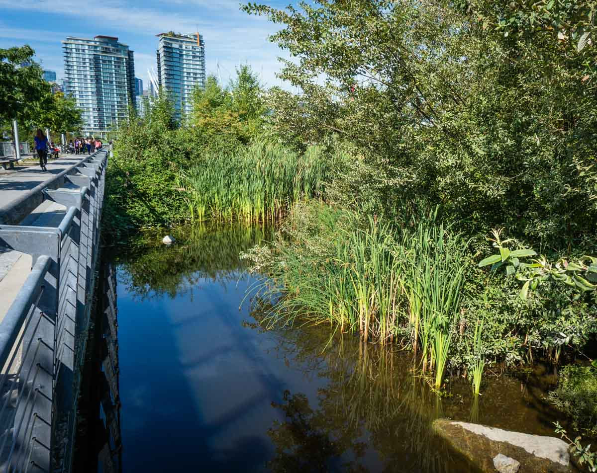 Booth Vancouver Real Estate - Fairview - 01