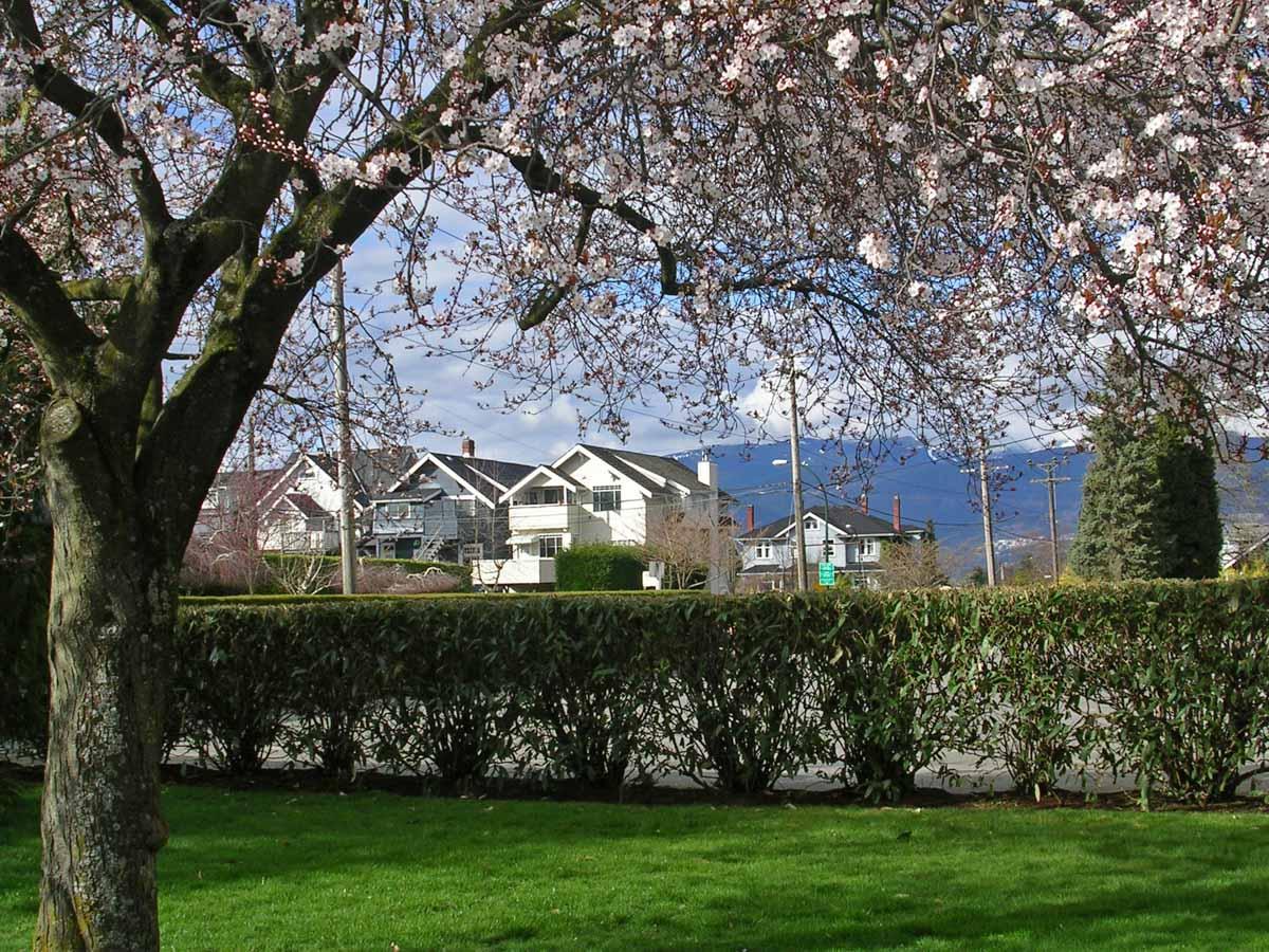 Booth Vancouver Real Estate - Kitsilano - 03