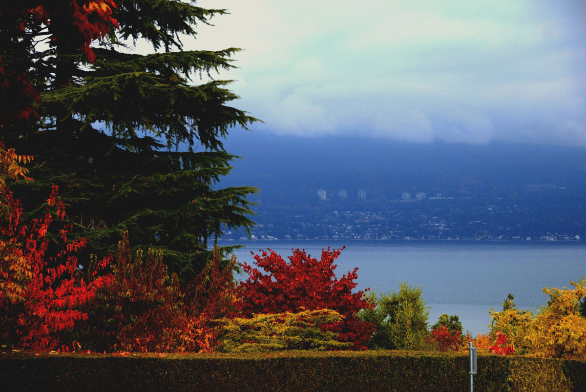 Booth Vancouver Real Estate - Point Grey - 02